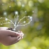 NOS é 5ª empresa mais sustentável da europa