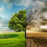 Transição para energia renovável impulsiona a transformação da indústria