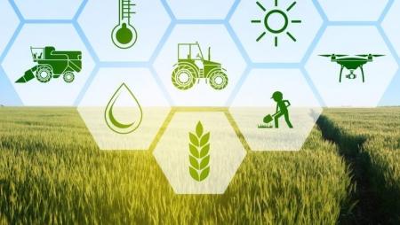 "Projeto Europeu ""FlexiGroBots"" apoia a indústria agrícola"