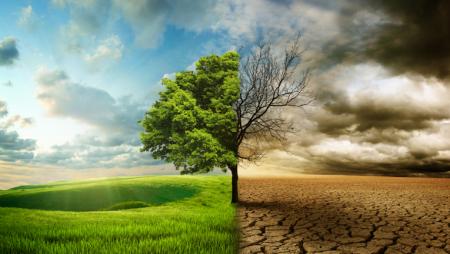 Investimento em veículos elétricos já teve impacto nas alterações climáticas