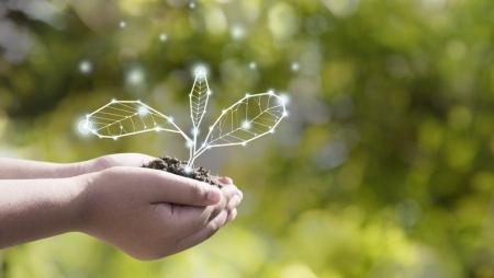 As 10 tendências de sustentabilidade para 2020
