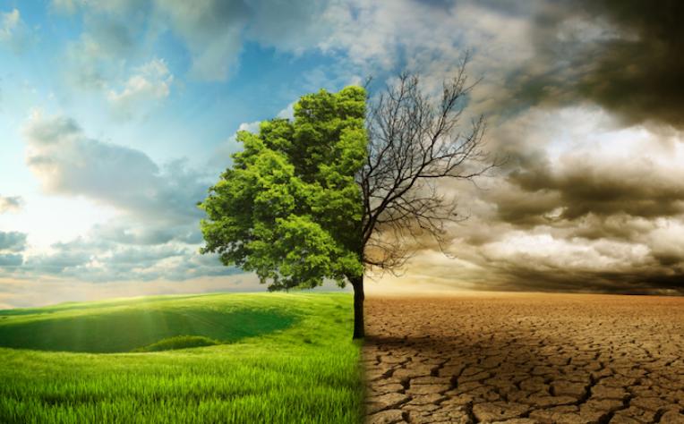 Indra adota objetivos de sustentabilidade ONU