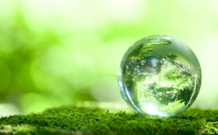 Novo programa para executivos na área da Sustentabilidade