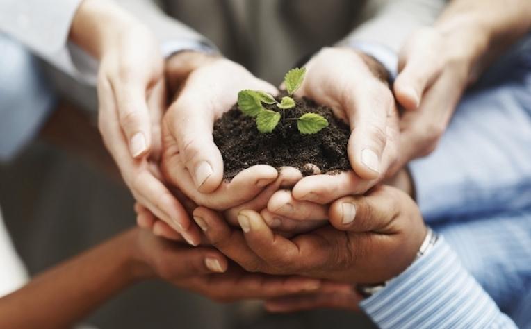 """Sustentabilidade entra no """"ADN corporativo"""""""