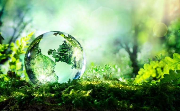 Proposta a criação do Dia Nacional da Sustentabilidade