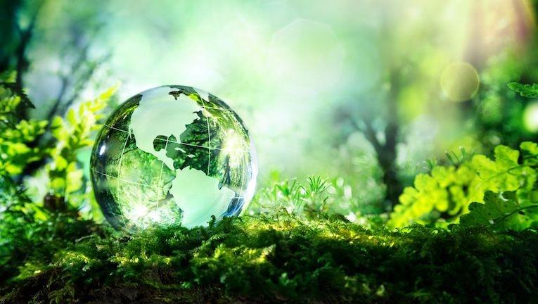 Schneider Electric lança serviço de consultoria em descarbonização